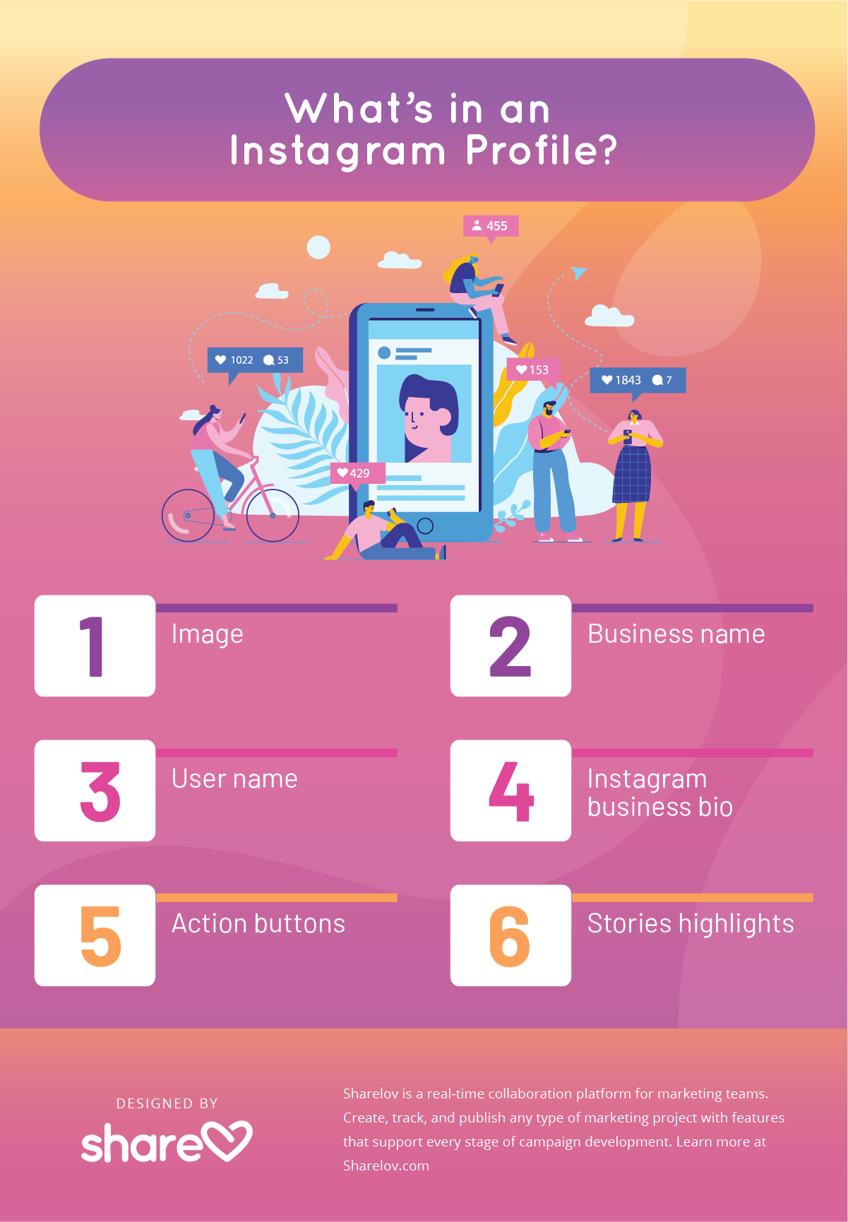 What's in an Instagram Profile? infographic