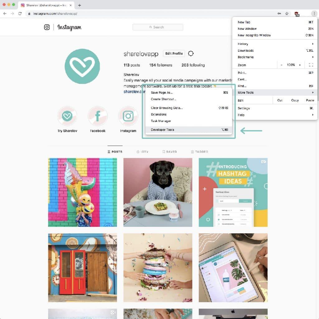 Developer Tools from your Google Chrome navigation bar