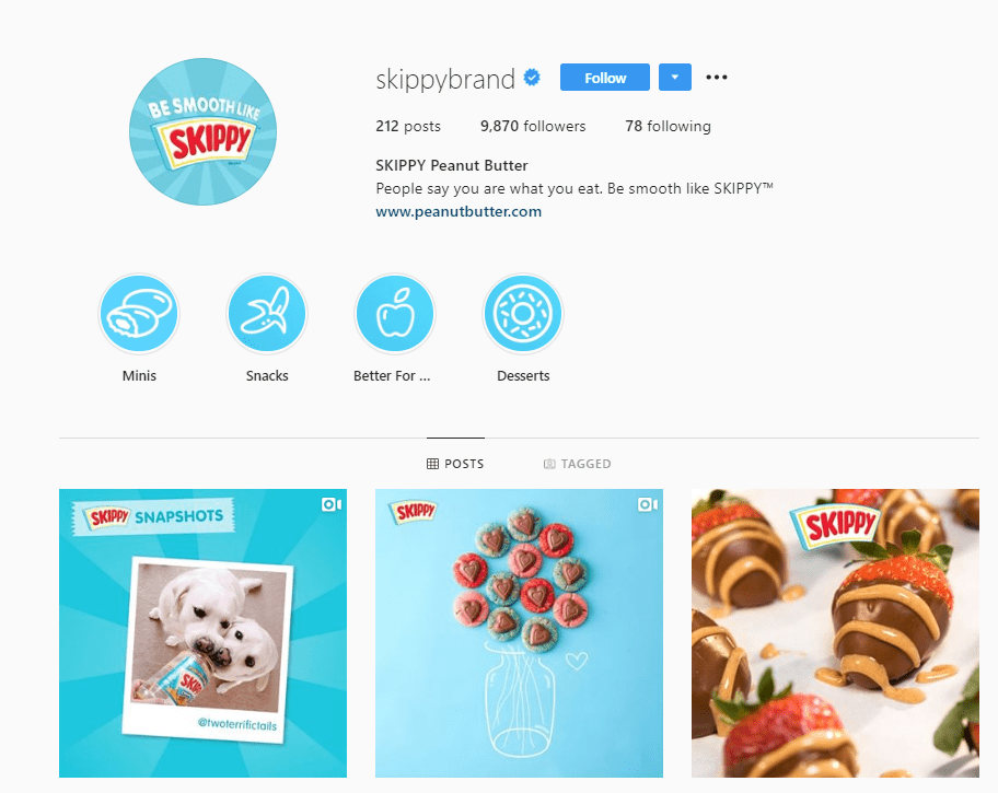 skippy instagram profile example