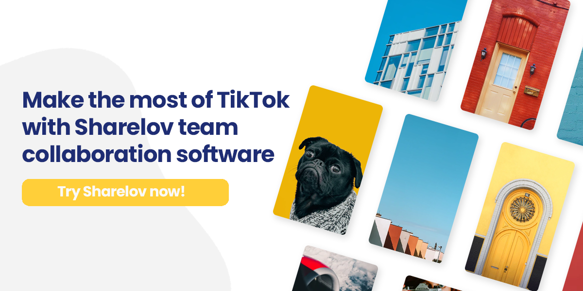 Make the most of TikTok with Sharelov team collaboration software Try Sharelov now!