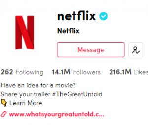 Netflix Adobe TikTok link